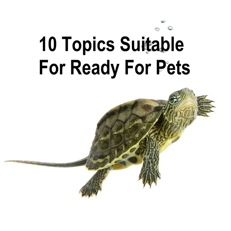 10 Topics Suitable For Ready For Pets  - 10 Topics Suitable For Ready For Pets