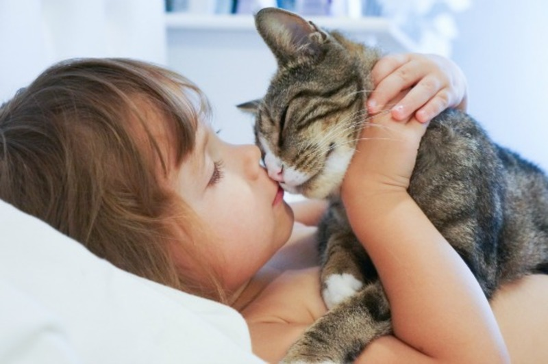 A young boy and his companion dog  - New study: Pets play a similar role to siblings in child development