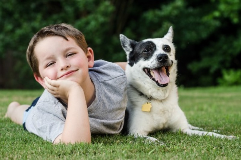 A young boy and his companion dog