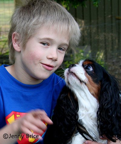 Best Mates: A Boy and his Cavalier