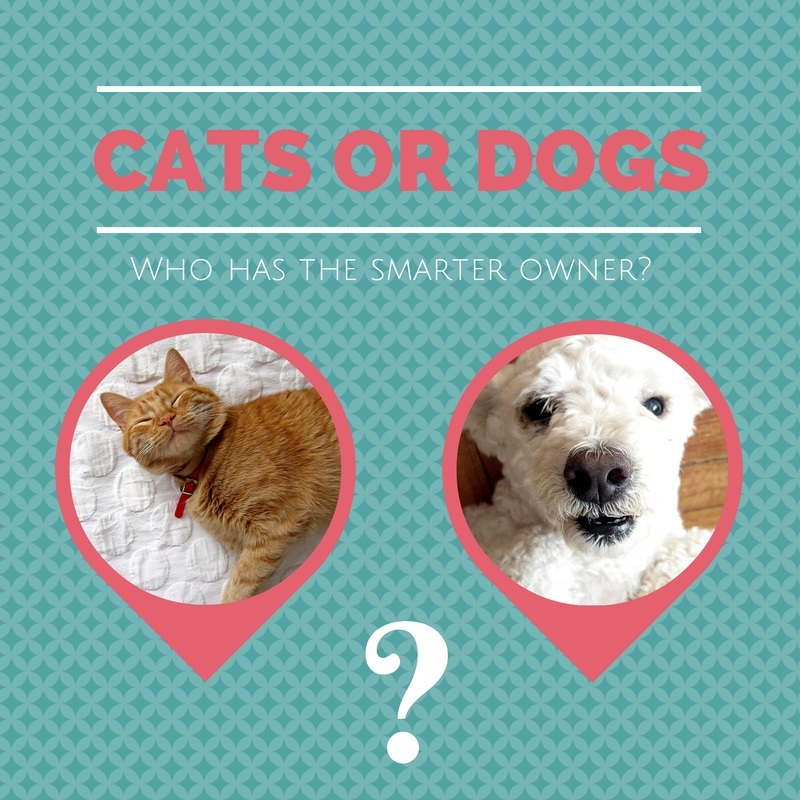 Study About Intelligence Of Dogs And Cats Vs