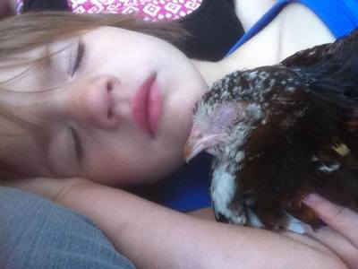 Child Sleeping with Chicken