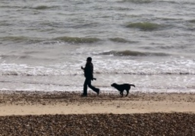 Dog and Owner Walking on Beach