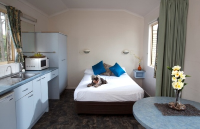 gold coast holiday park  - Pet Friendly Stays in Queensland