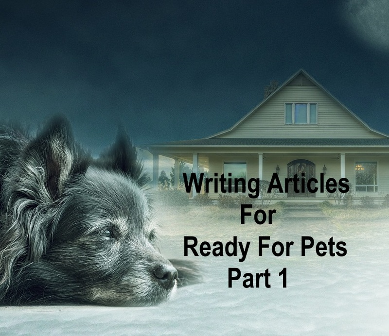 Writing articles for Ready For Pets part 1