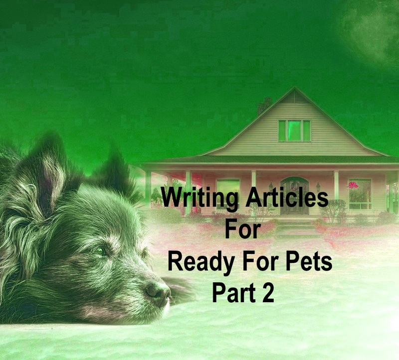 Writing articles for Ready For Pets part 2  - Writing Articles For Ready For Pets Part 2